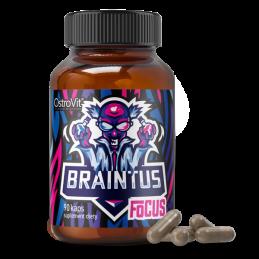 OSTROVIT - BRAINTUS FOCUS...